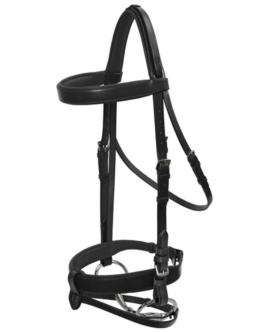 Platinum Wide Padded Hunt Bridle image 1