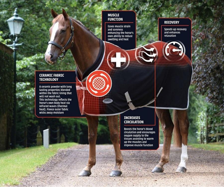 Weatherbeeta Therapy-Tec Standard Neck image 1