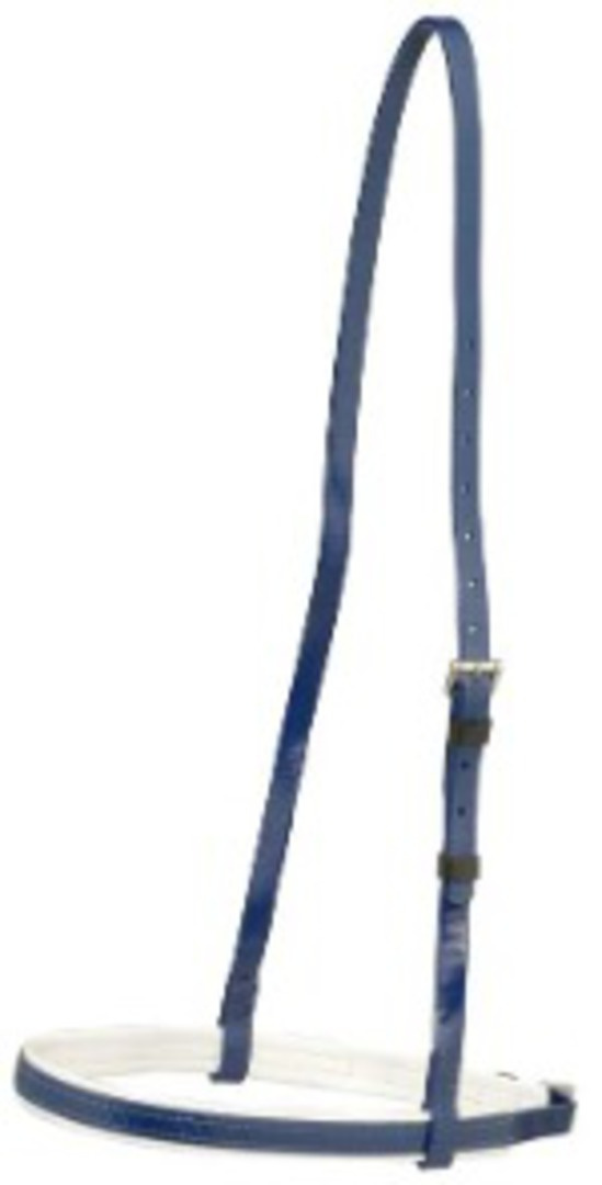 Aintree Cavesson Noseband- White Trim image 0