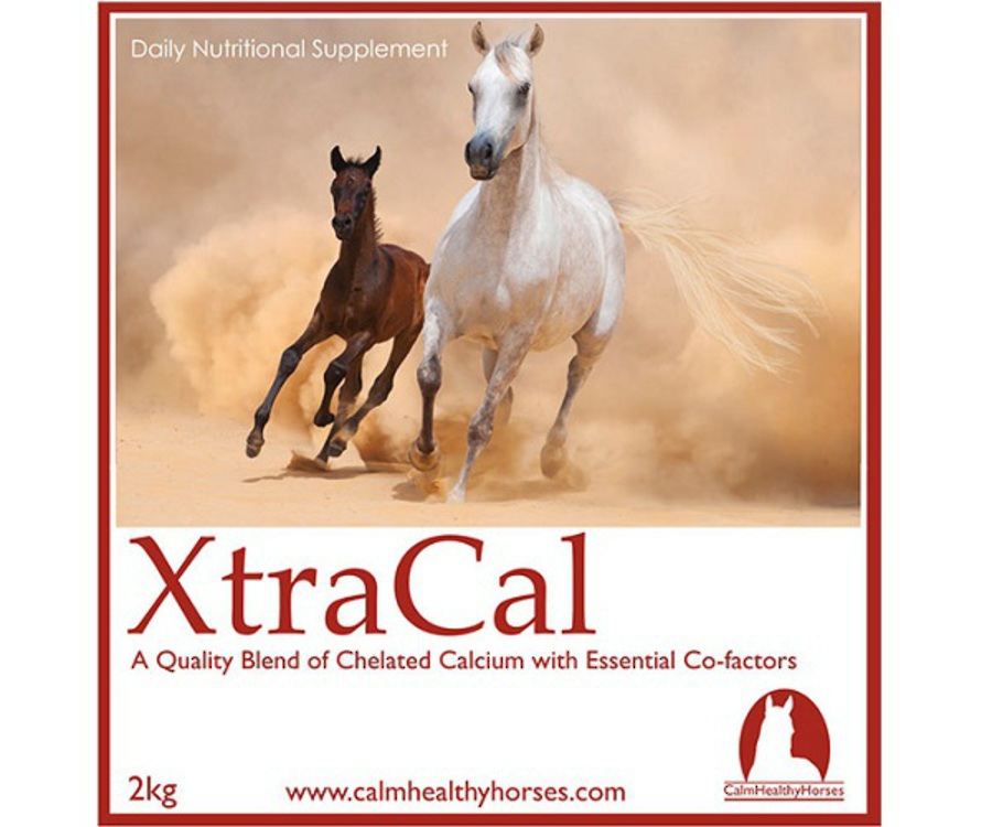 Calm Healthy Horses - XtraCal image 0