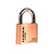 Click to swap image: Light Commerical Resettable Brass Combination Padlock SRB50R