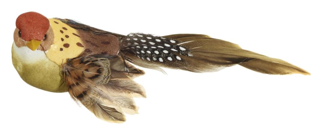 BirdClip Sparrow 14cm image 0