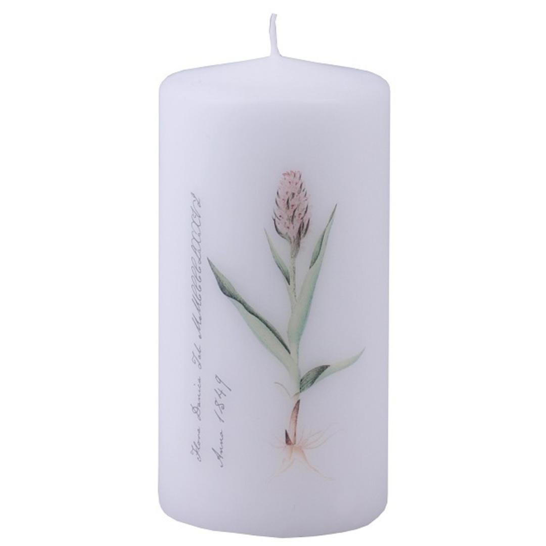 Flora Danica Pillar Candle, Orchid image 0