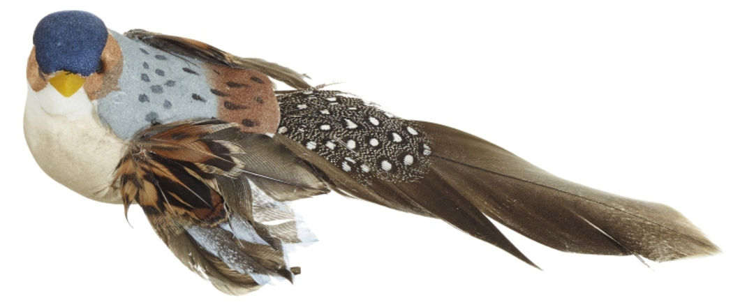 Blue Finch Bird Clip 14cm image 0