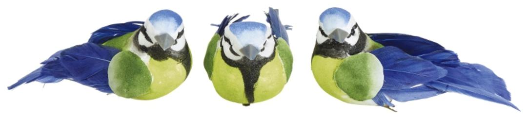 Blue Tit Dark Blue Bird Clip image 0