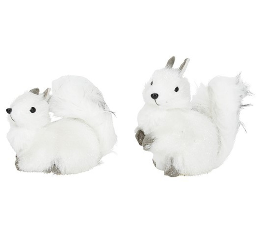 Squirrel White & Grey Fluffy Fur SOLD OUT image 0