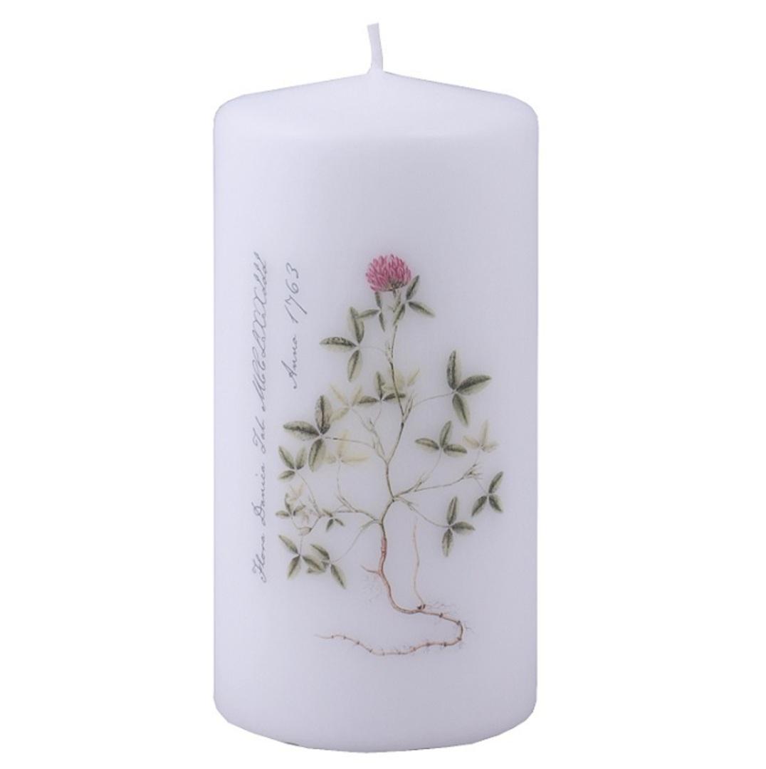 Flora Danica Pillar Candle, Clover image 0