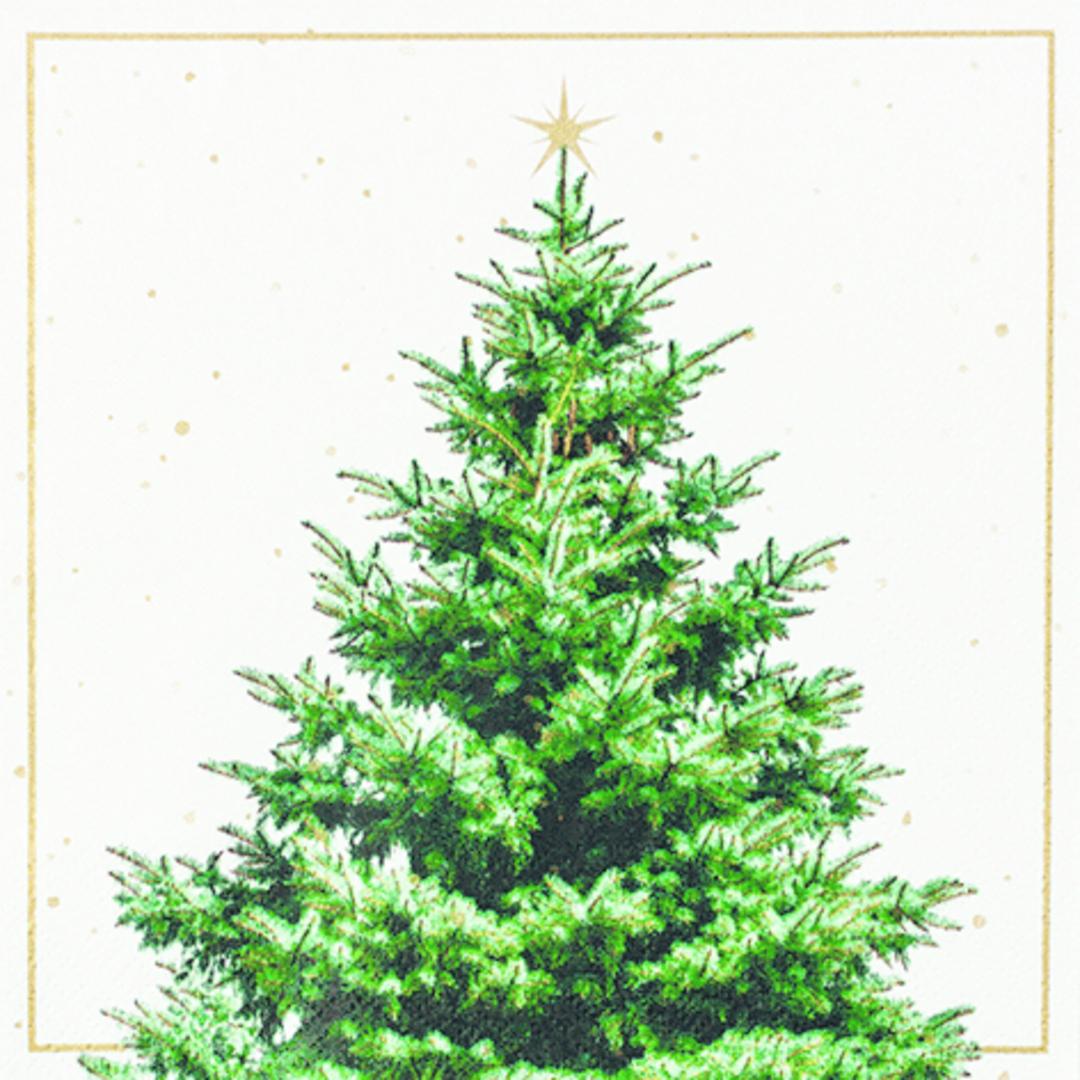 Paper Napkins 33cm, Fir Tree image 0
