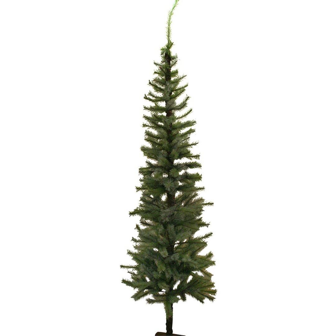 Slimline Green Fir Tree 2 mtr image 0
