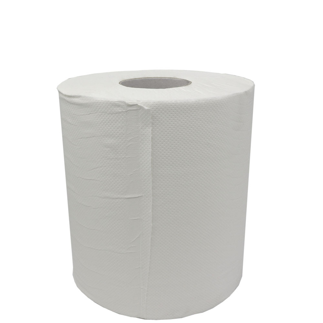 PAPER TOWELS - 2 PLY image 0