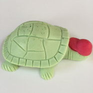 Turtle with red hat