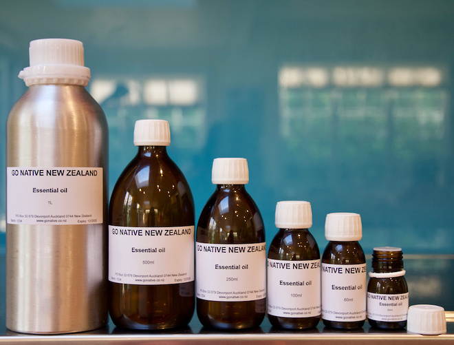 Bay essential oil, West Indies image 1