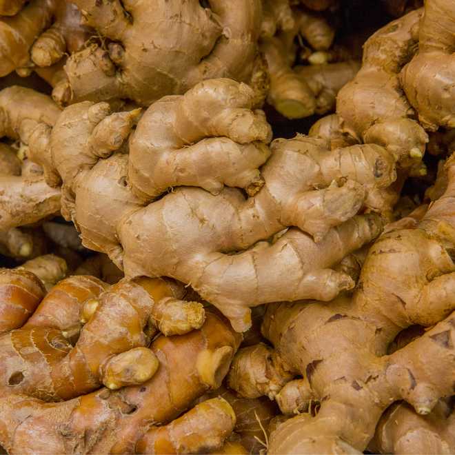 Ginger essential oil, certified organic image 0