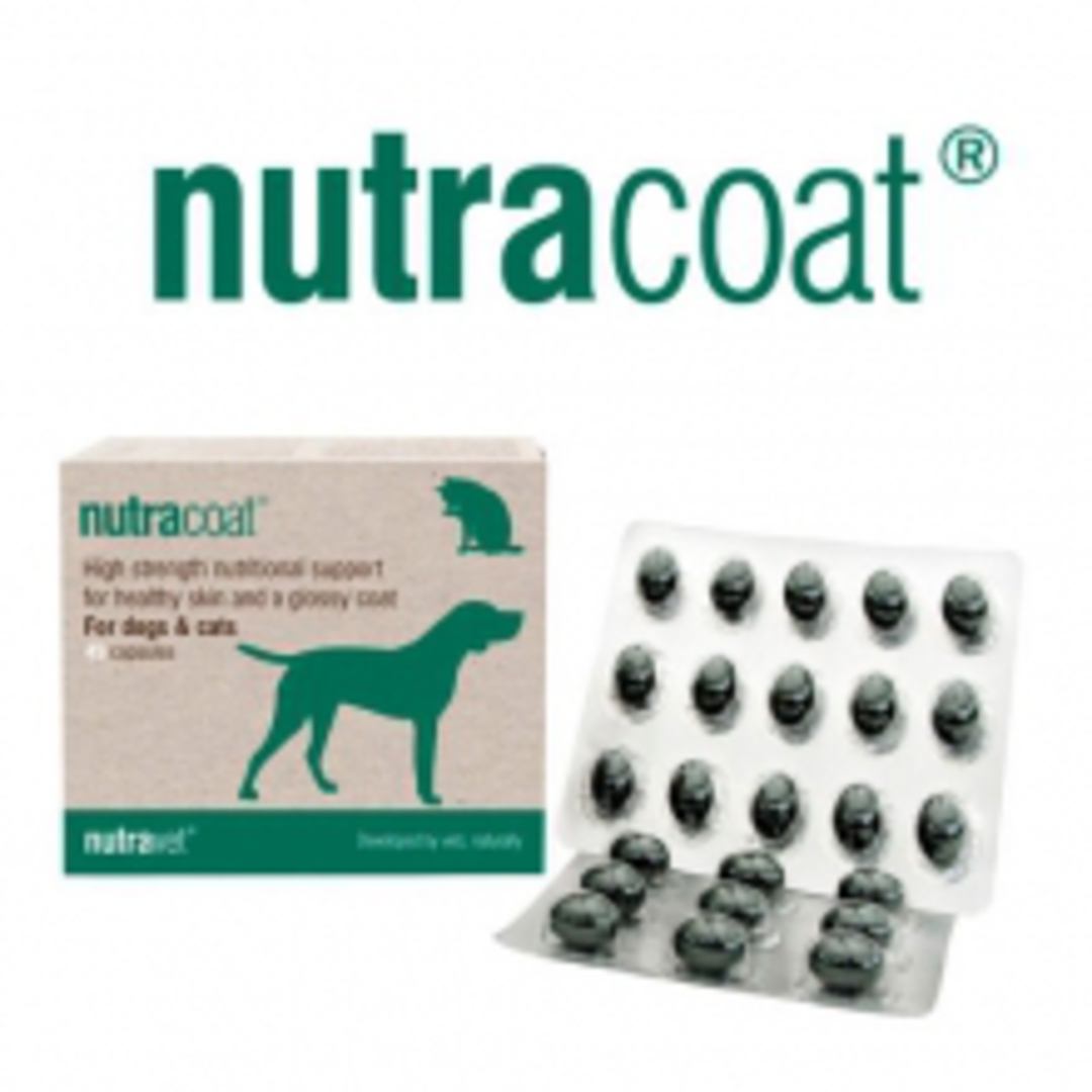 Nutracoat  for Cats & Dogs Healthy Skin & Coat- 45 capsules image 0