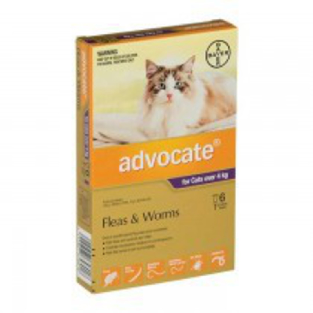 Advocate Spot-on Flea and Worm Treatment for Large Cats over 4kg (Purple / 6 pippets) image 0