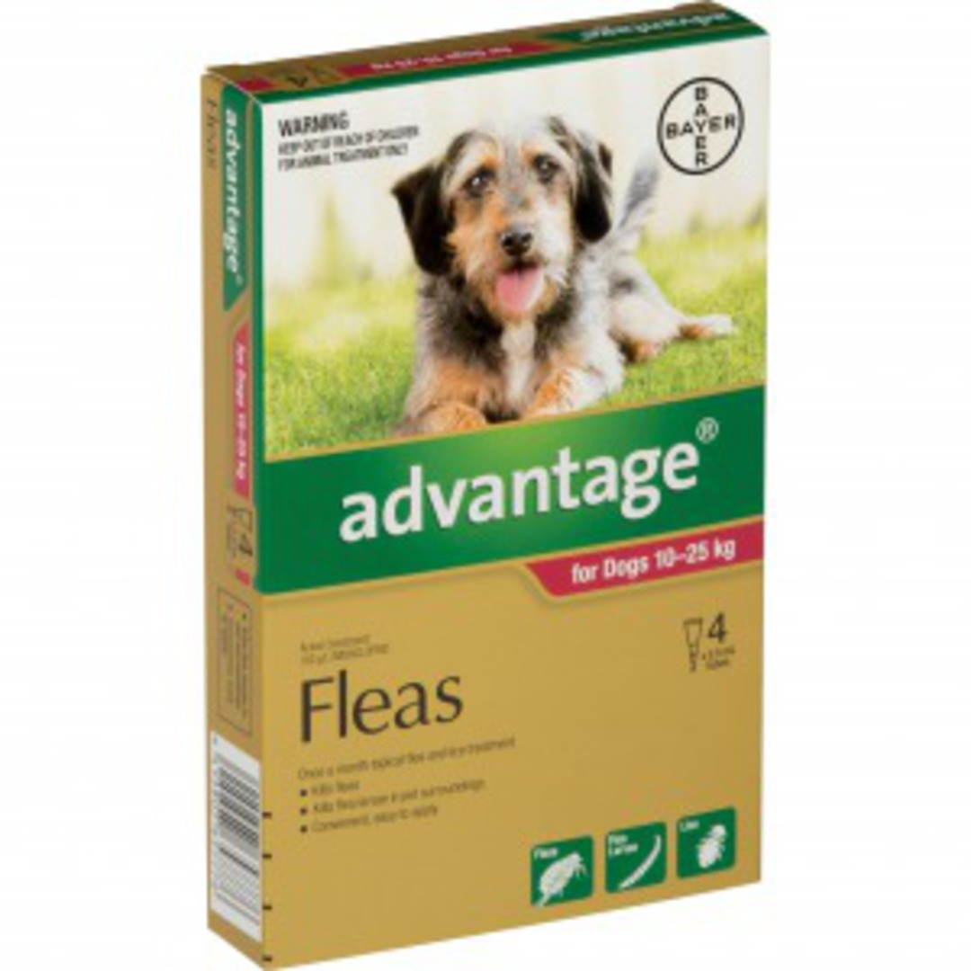 Advantage Spot on Flea Treatment for Large Dog 10-25kg (Red / 4 pippets) image 0
