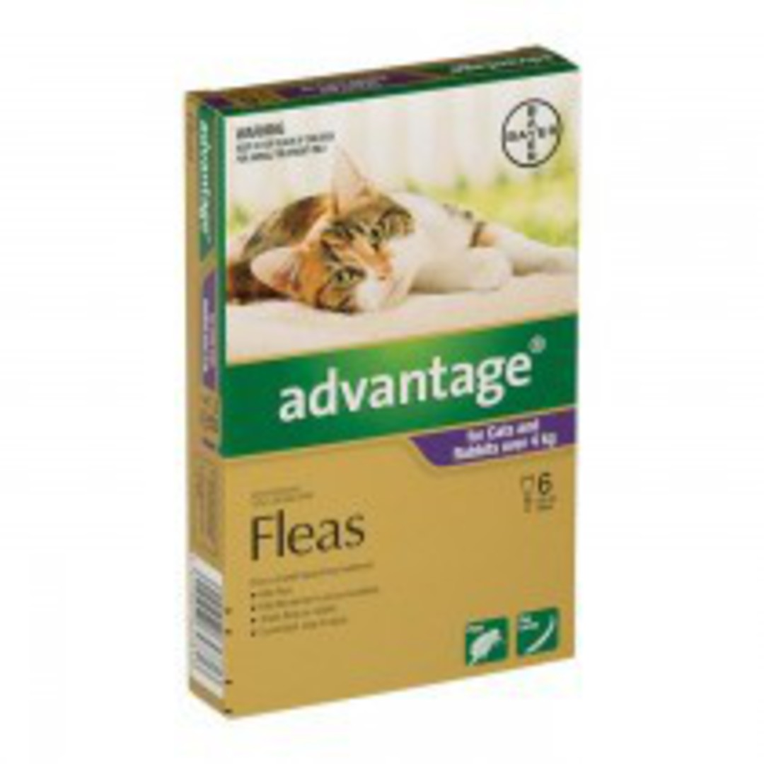 Advantage Spot-on Flea Treatment for Cats and Rabbits over 4kg (Purple / 6 pippets) image 0