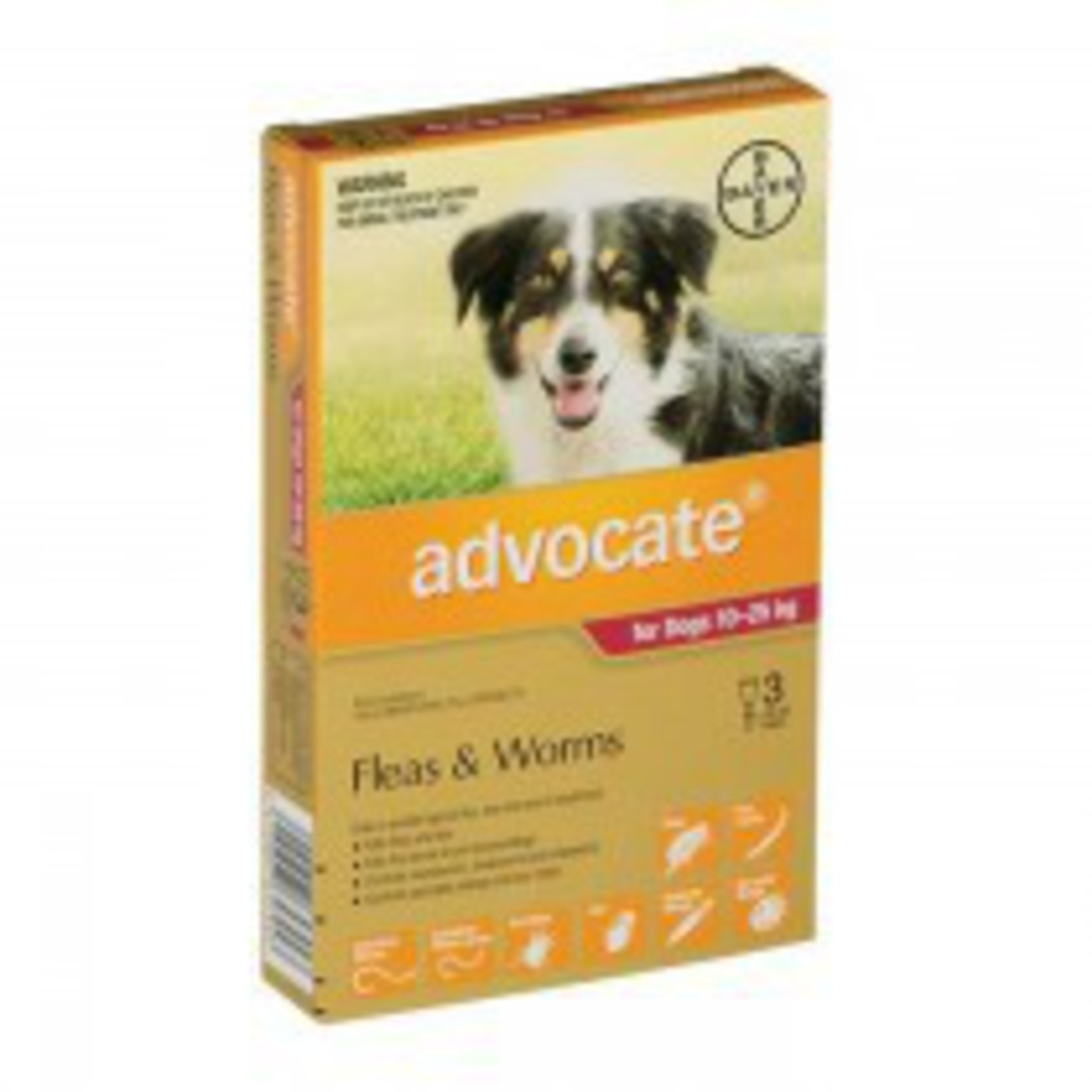 Advantage Spot-on Flea and Worm Treatment for Large Dogs 10-25kg (Maroon / 3 pippets) image 0