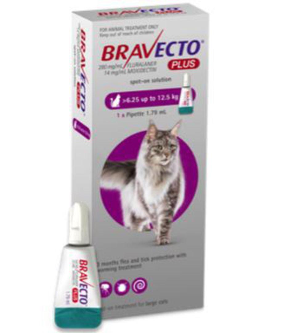 Bravecto Plus Spot-On for Large Cats - 6.2 - 12kg image 0