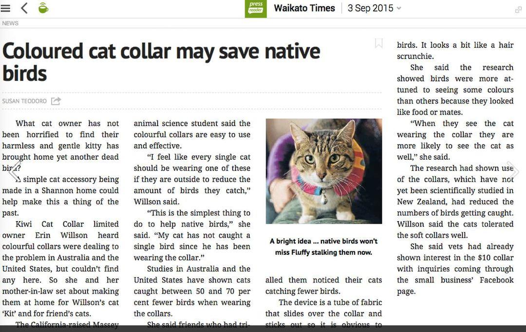 Kiwi Cat Collars image 3