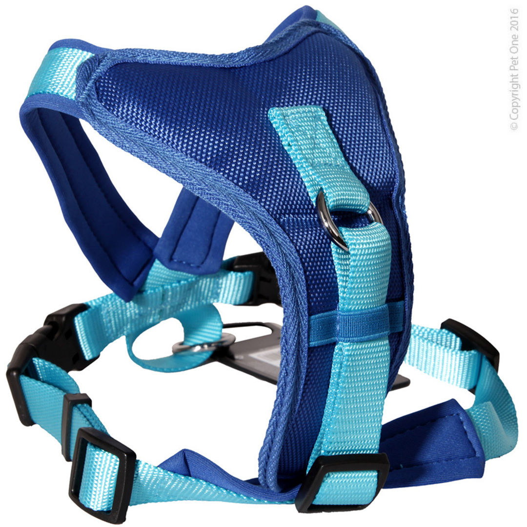 Pet One Harness - Comfy 64 - 78cm Padded 25mm Blue image 0