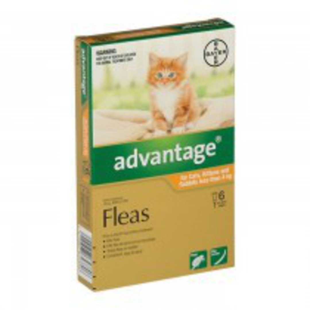 Advantage Spot-on Flea Treatment for Cats, Kittens and Rabbits up to 4kg (Orange / 6 pippets) image 0