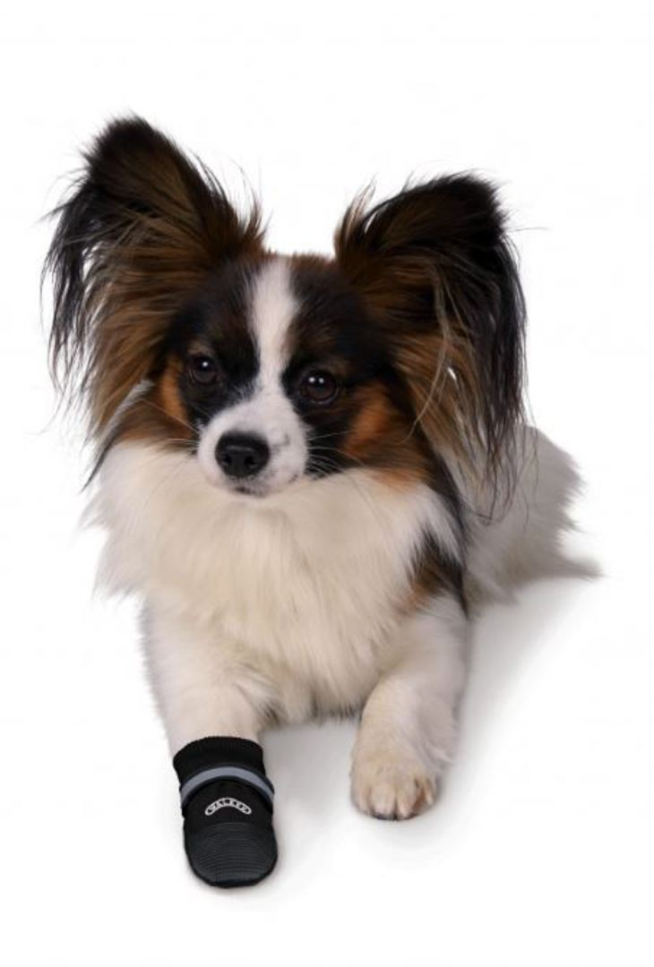 Trixie Walker Care Comfort Boots 2pk XL image 2