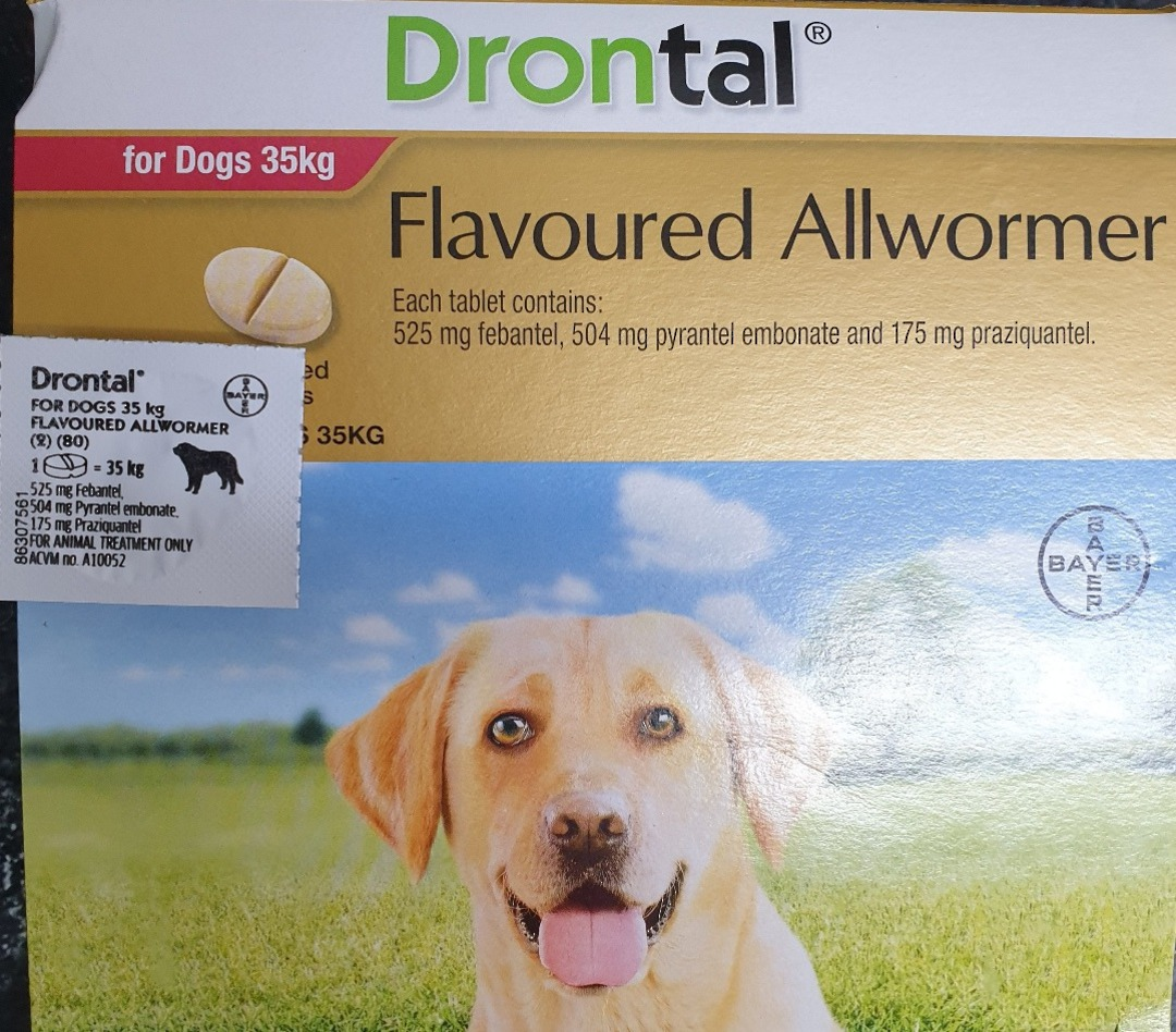 Drontal AllWormer for Dogs 20-35kg / 1 Tablet image 0