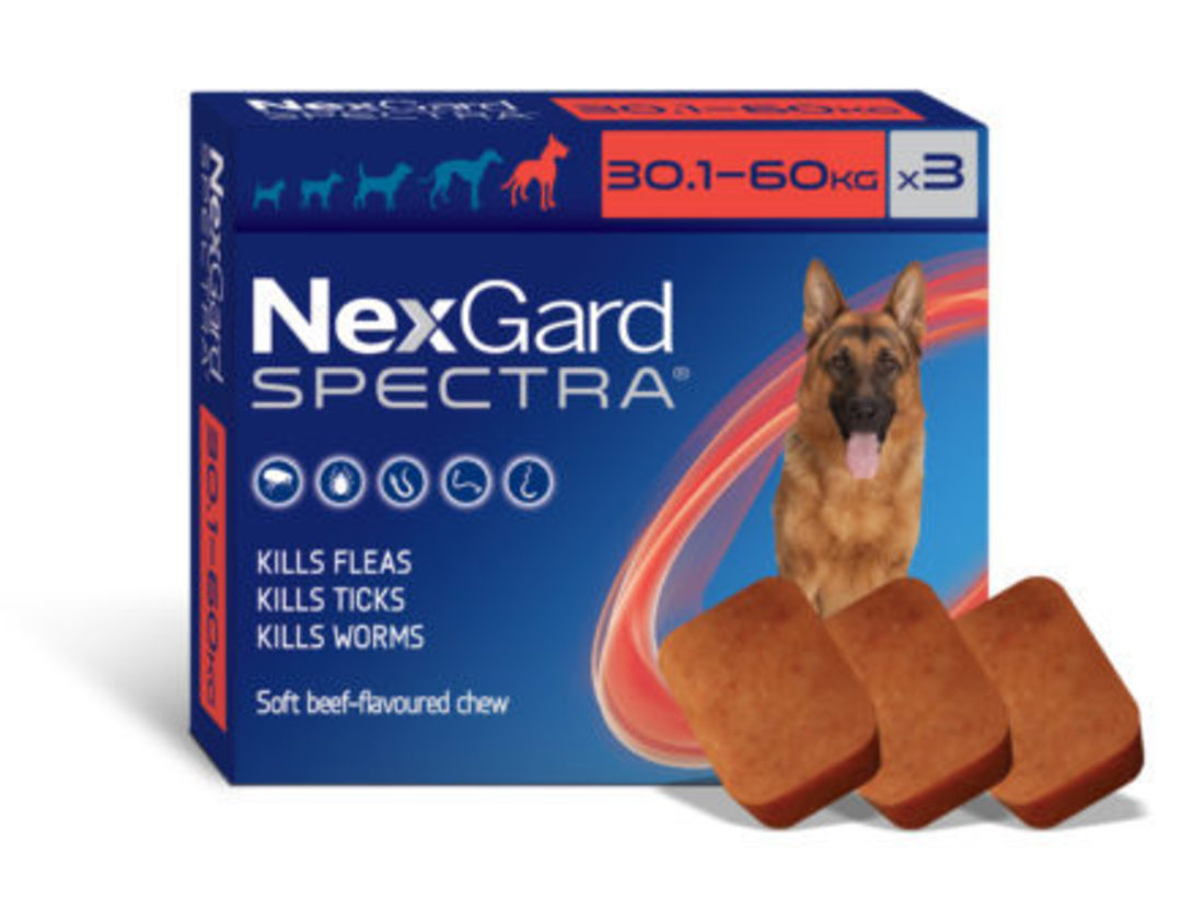 NexGard Chewable Flea & Worm Treatment for Very Large Dog 30.1-60kg  (Red / 3 chewable) image 0