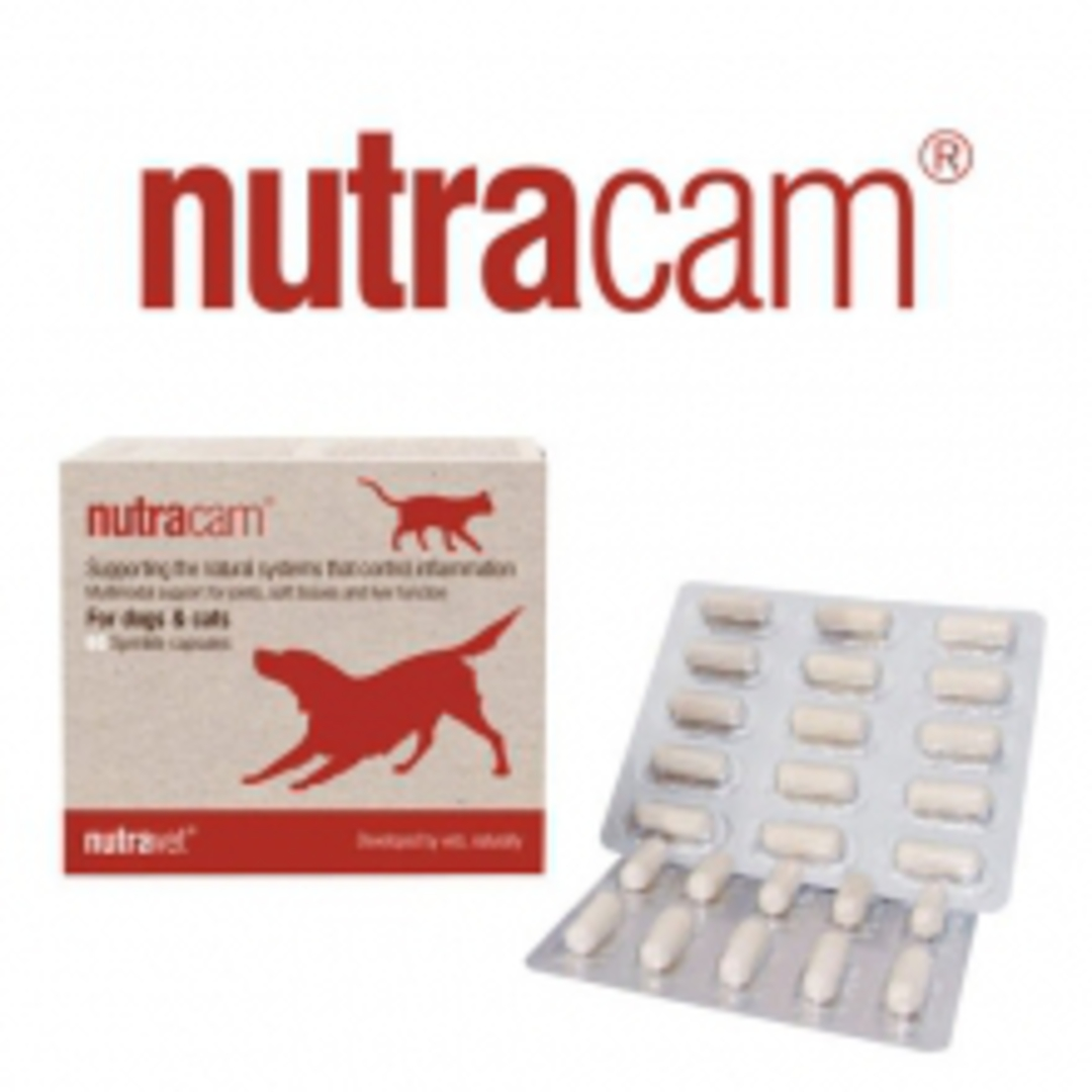 Nutracam for dogs & cats Joint & Inflammation -  60 capsules image 0