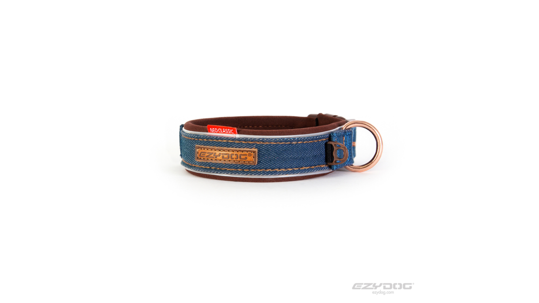 ED Collar Neo Classic L Denim image 0