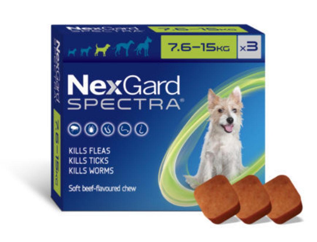 NexGard Chewable Flea & Worm Treatment for Medium Dogs 7.6-15kg (Green / 3 chewable) image 0