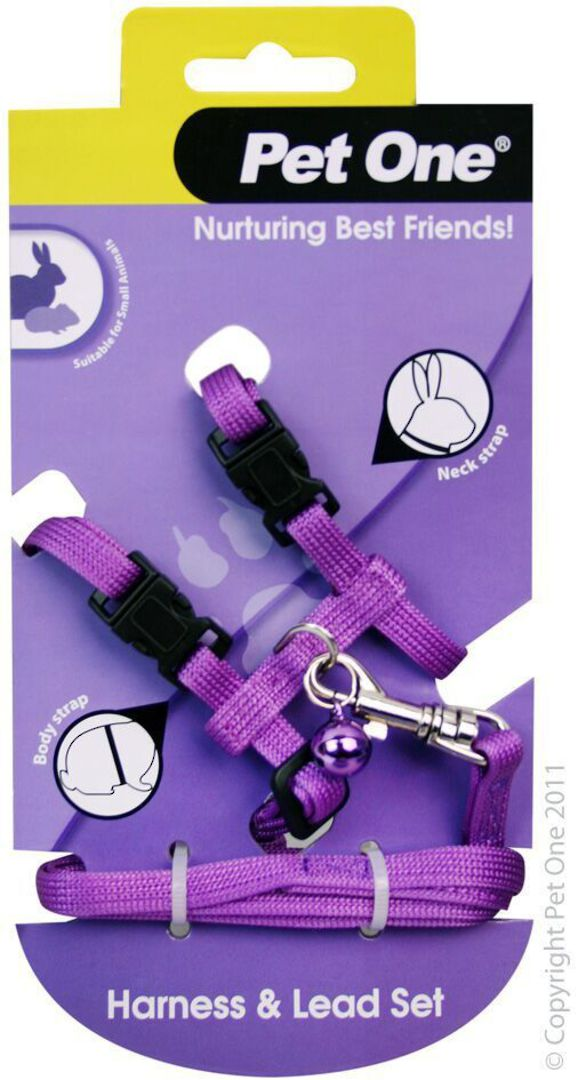 Leash and Harness Rabbit/Guinea Pig Purple image 0