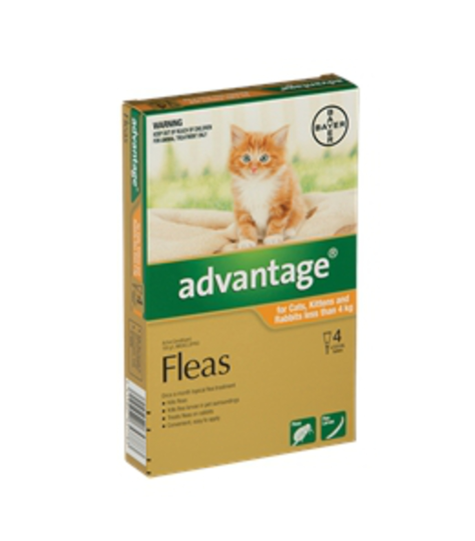 Advantage Spot-on Flea Treatment for Cats, Kittens and Rabbits Up to 4kg (Orange / 4 pippets) image 0