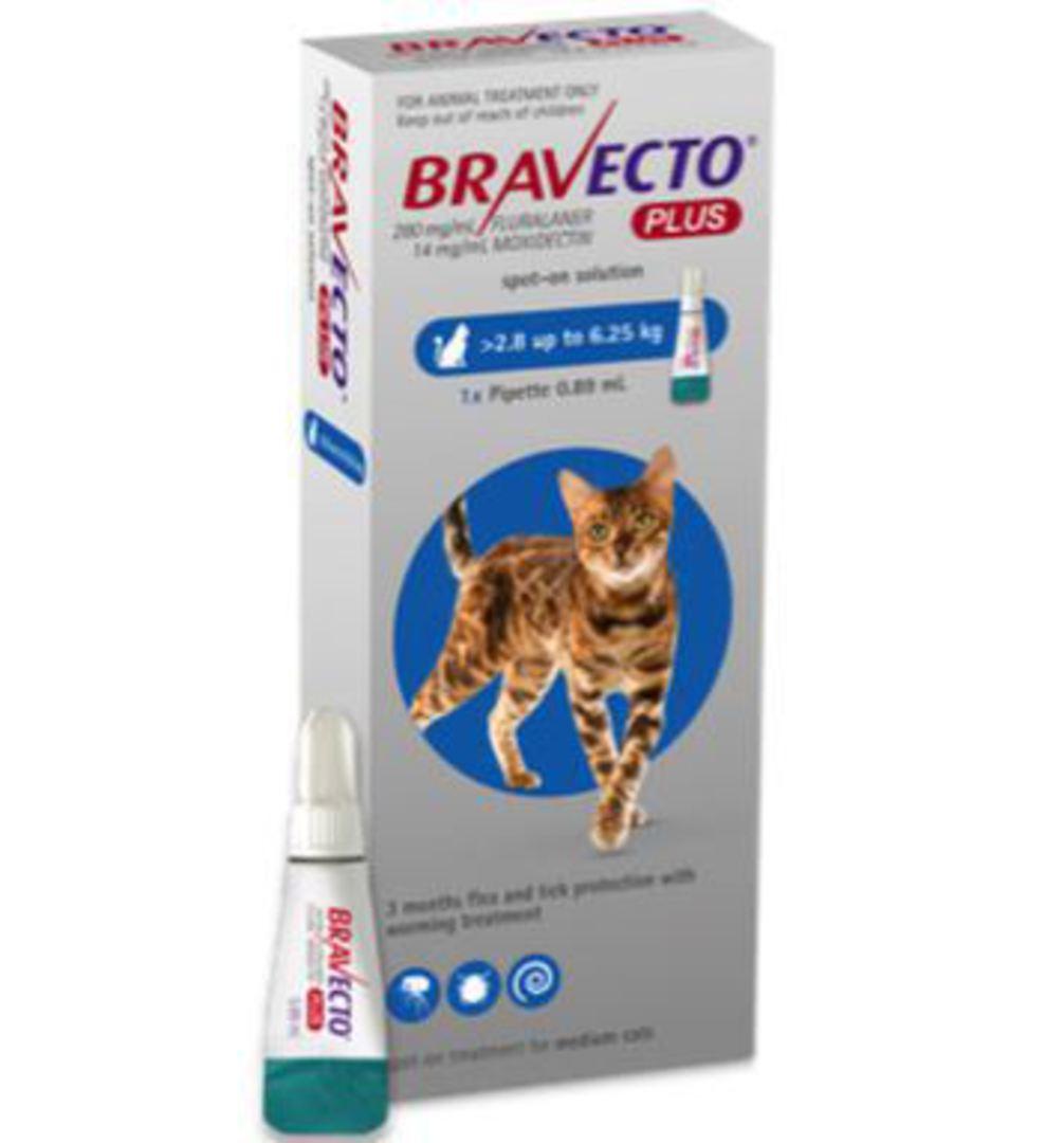 Bravecto Plus Spot-On for Cats - 2.8 - 6.2kg image 0
