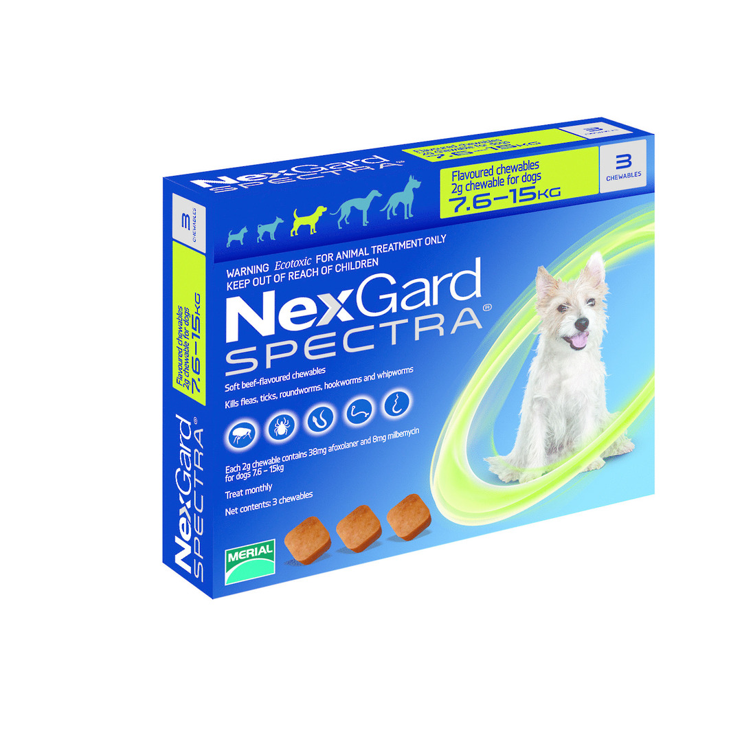 NexGard Chewable Flea & Worm Treatment for Medium Dogs (Green / 3 chewable) image 0
