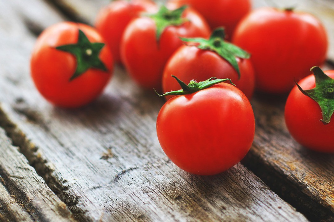 Red Tomatoes image 0