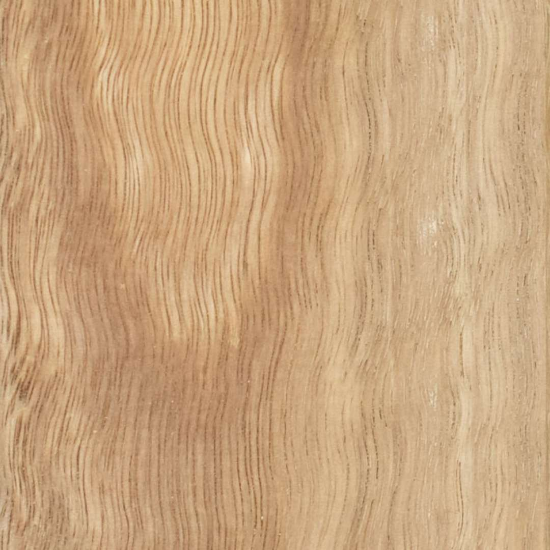 Spotted Gum image 0