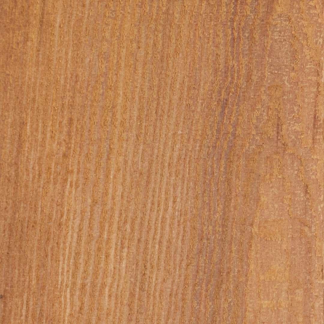 Western Red Cedar image 0