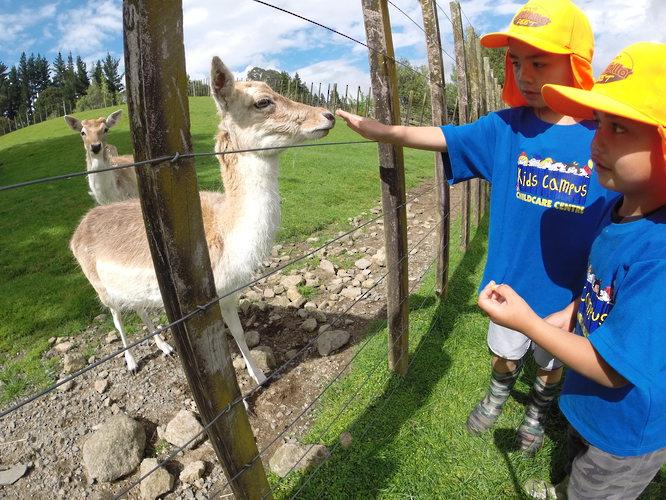 Excursion at Kids Campus Daycare Tauranga