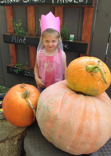 Brooklyn grew some giant Pumpkins