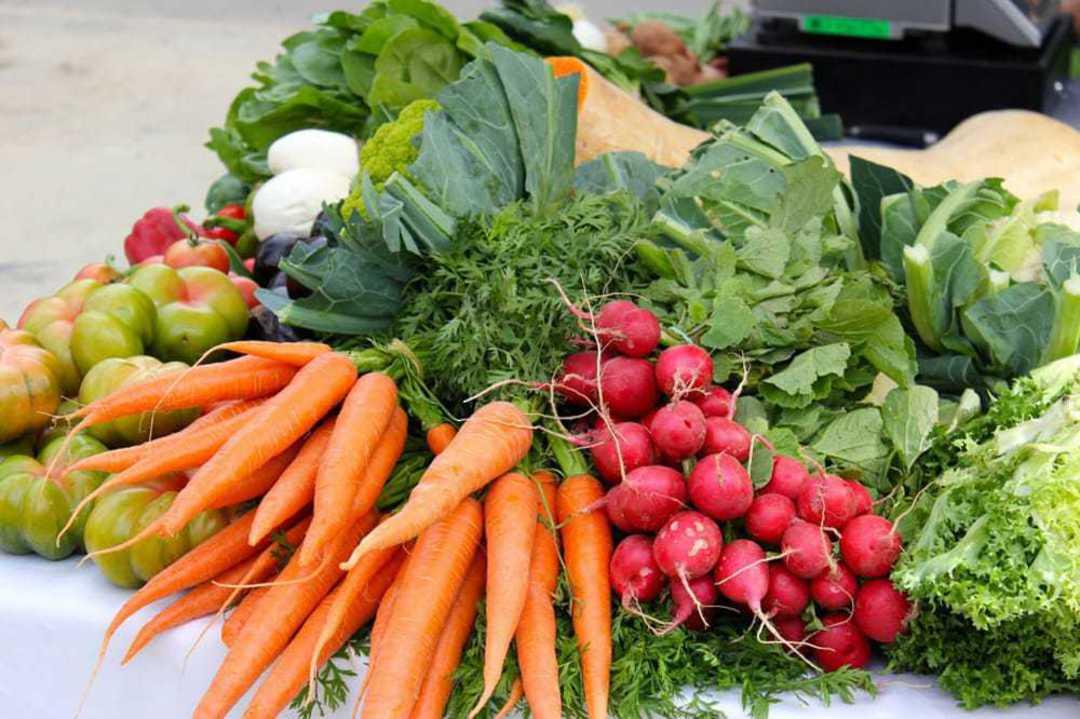 Best Selling Gourmet Vegetables Selection