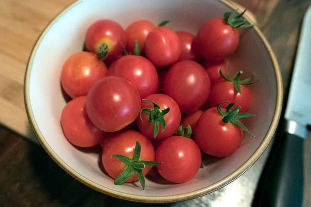 Tomato Baxters Early Bush - tasty red cherry tomato