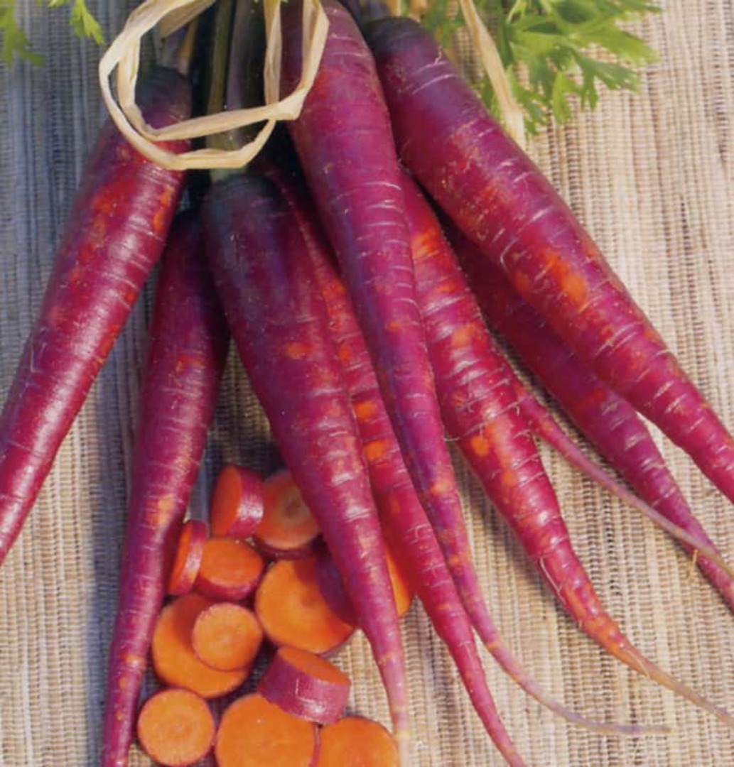 Carrot Purple Dragon - violet carrots with orange interior