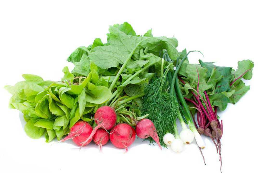 Best Selling Organic Vegetables Selection