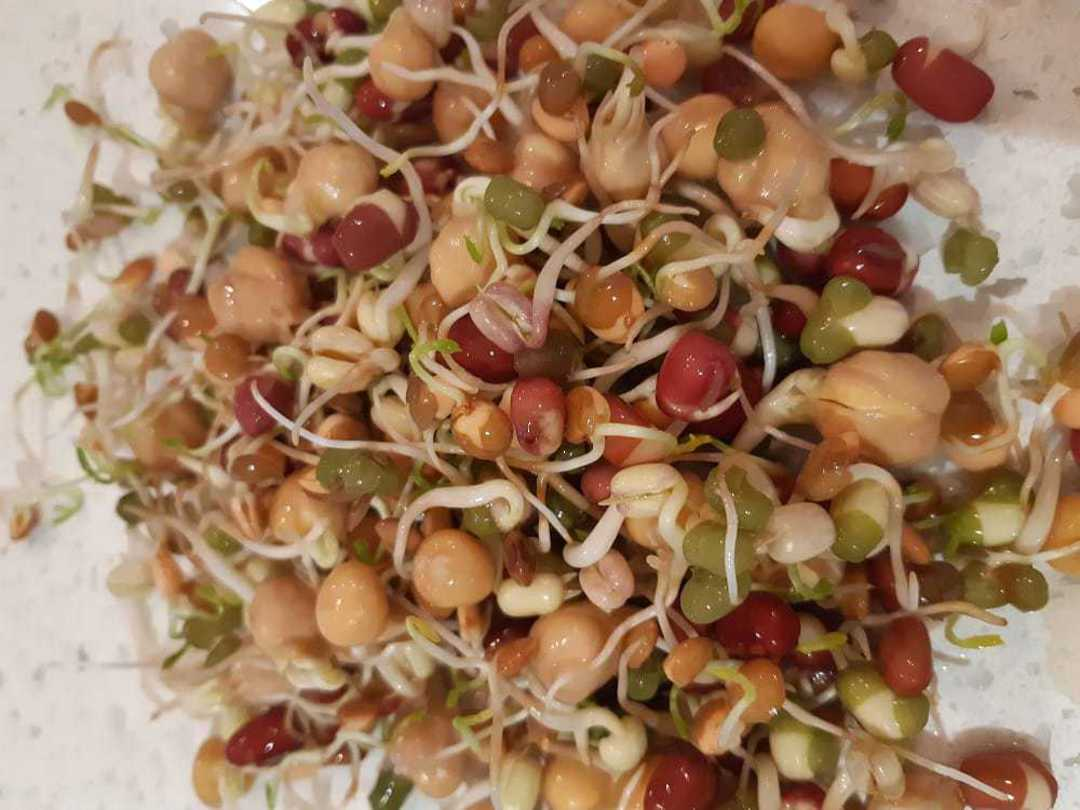 Organic Stir Fry Combo sprout