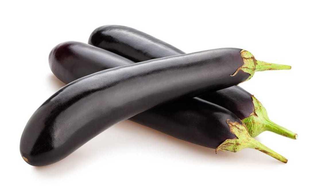 Eggplant Midnight - good-looking shiny black Asian eggplant