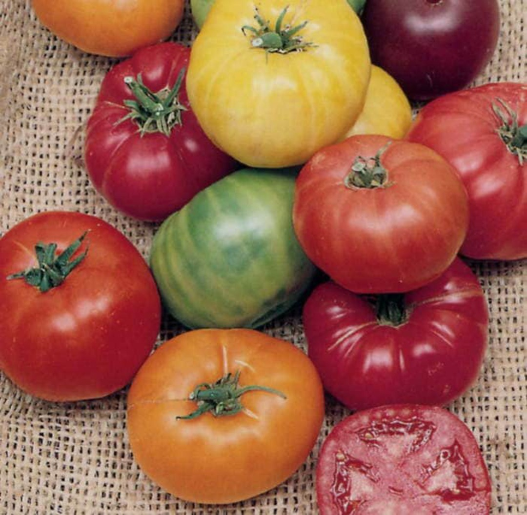 Tomato Rainbow Blend - mixture of many of our Heirloom Tomatos