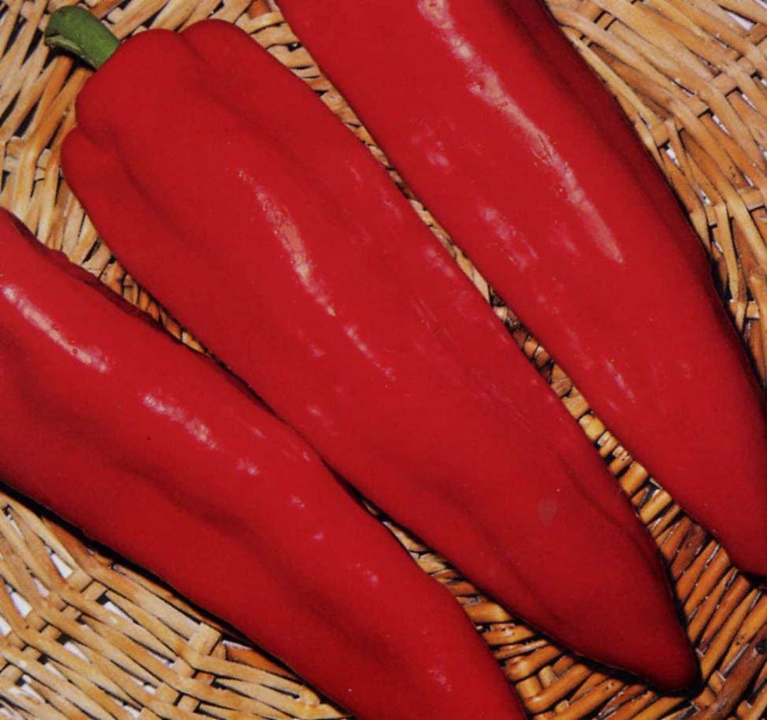 Pepper Cornos Red - long deep vivid red fruit