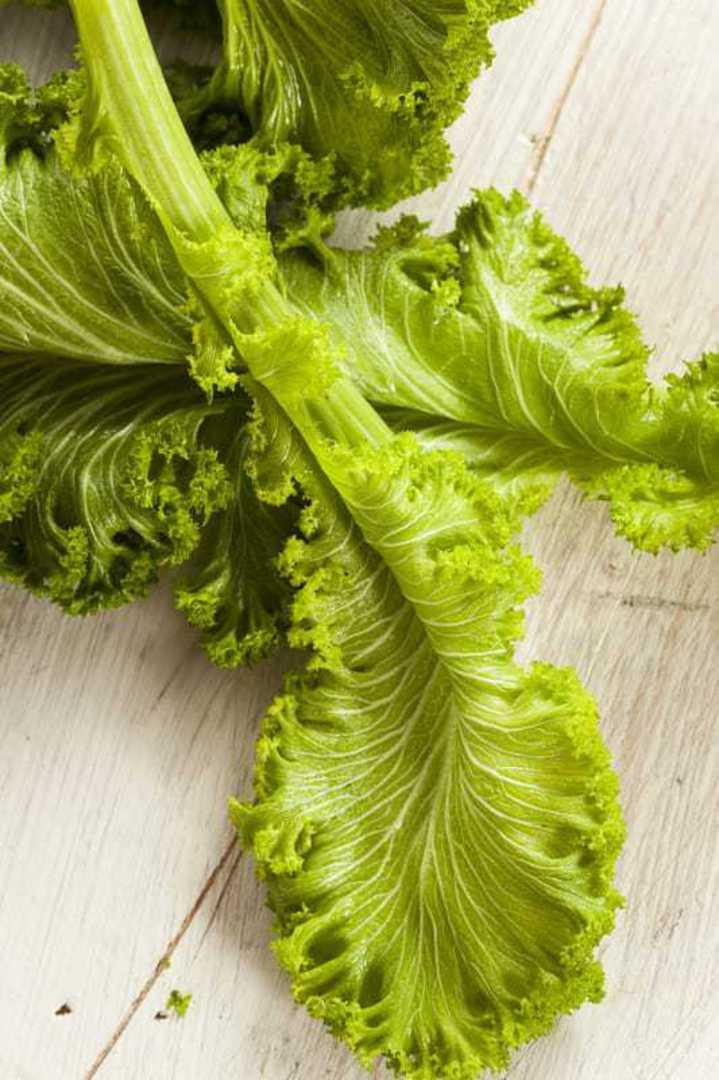 Mustard Gai Choy - broad flat light green crisp leaves